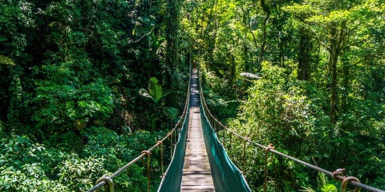 Hanging Bridges Tour in La Fortuna